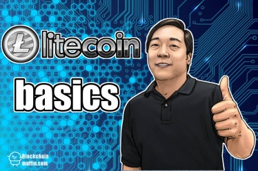 What is Litecoin cryptocurrency? | Beginner's Guide