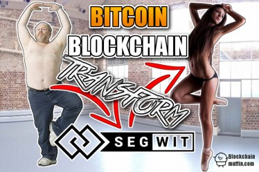 What is SegWit? | Beginner's Guide