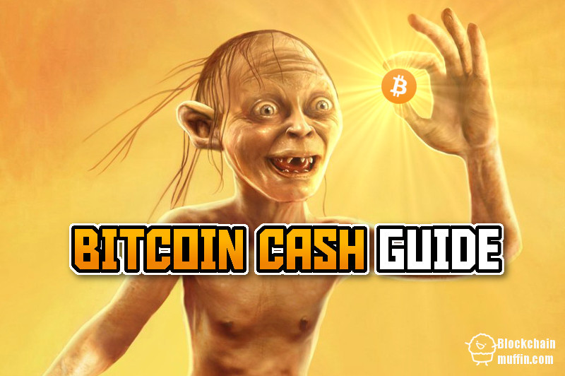 What is Bitcoin Cash? | Beginner's Guide to Bitcoin Cash