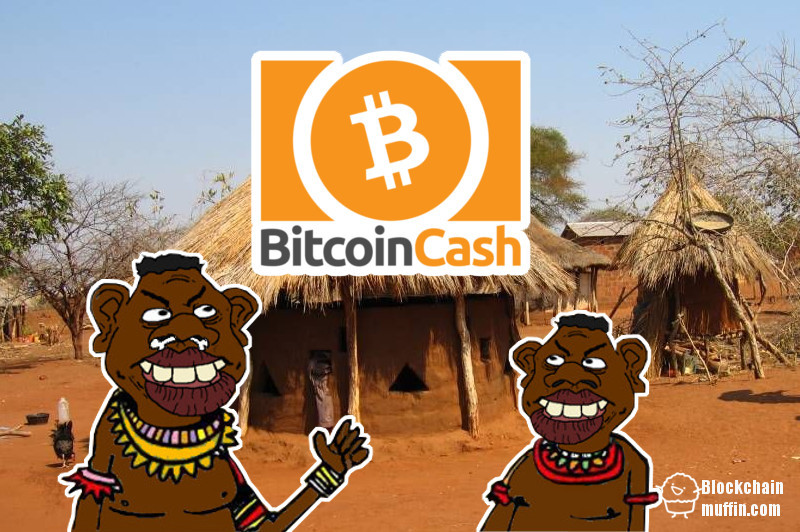 Kenya and South Africa are winning the race in implementing Bitcoin Cash payment system