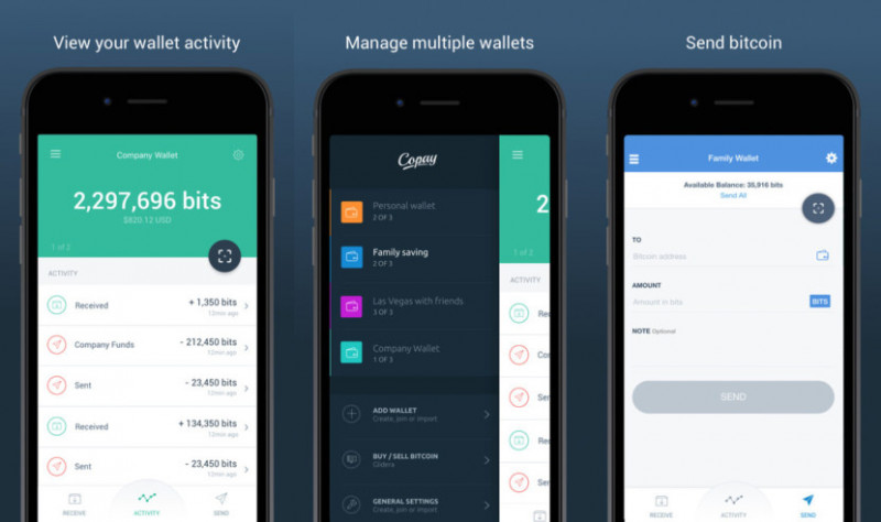 best mobile multi cryptocurrency wallet