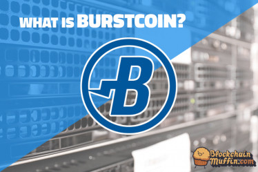 What is BurstCoin? | Beginner's Guide